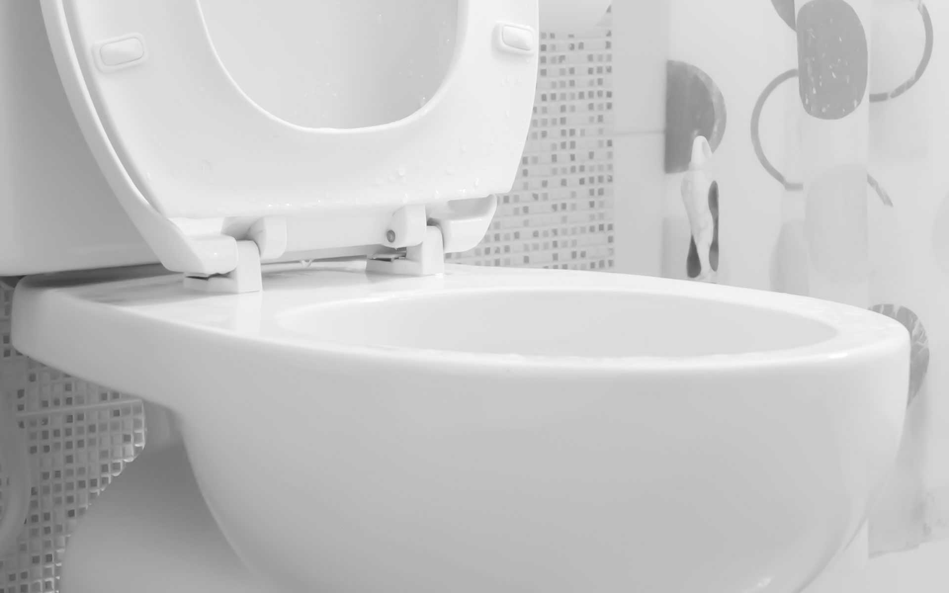 Lakewood Toilet Repair